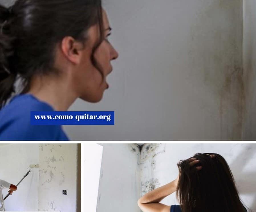 Como quitar la humedad de la pared soluci n casera 2018 - Quitar humedad de las paredes ...