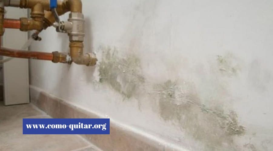 Como quitar las humedades de casas viejas 2019 - Quitar humedad pared ...