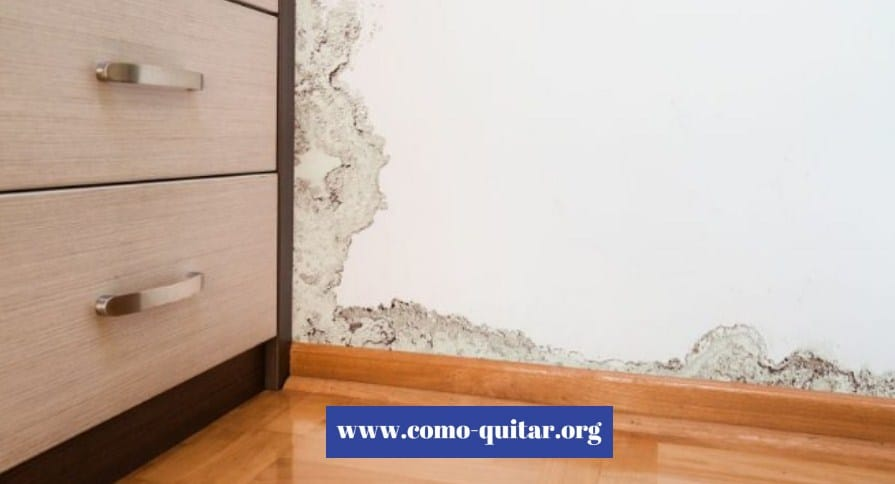 Como quitar la humedad de las paredes interiores tratamientos con pintura 2019 - Como quitar pintura de la pared ...